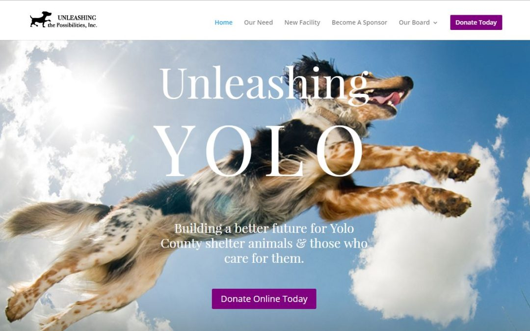 Unleashing the Possibilities, Inc.